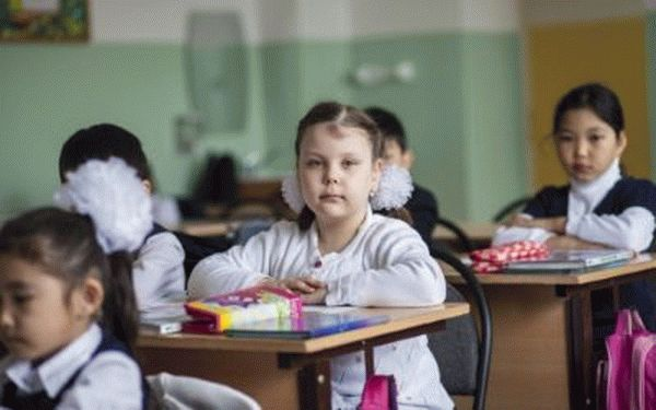 Нужна ли регистрация для школы и как ее сделать в 2019 году