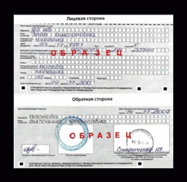 Бланк временной регистрации для иностранных граждан 2019 2019 год